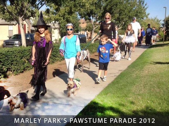 Pawstume-Parade-at-Marley-Park